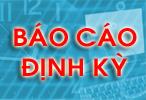 http://www.thanhdoan.hochiminhcity.gov.vn/vanphong/data/aditems/113/bao%20cao%20dinh%20ky.jpg